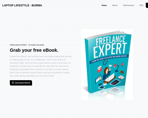 Freelance Expert
